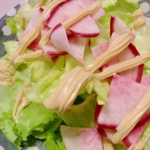 自家製和風マヨで♪赤カブのサラダ