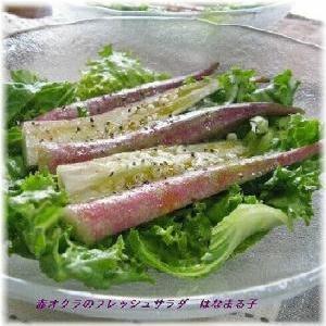 涼しげな夏野菜・赤オクラのサラダ
