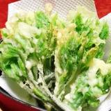 簡単!美味!春を食べよう!『コシアブラの天ぷら』