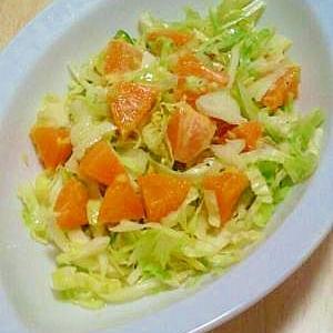キャベツとタンカンのサラダ