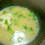 コチ(鯒)のお味噌汁