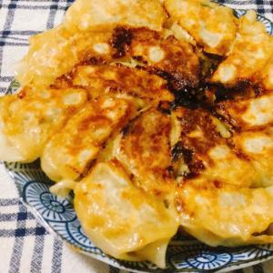 白菜で作るジューシー焼き餃子