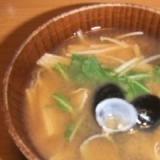 """""""えのき""""と""""しじみ""""のあったか味噌汁"""