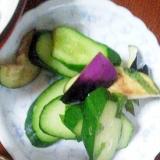 茄子と胡瓜の香漬