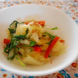 白菜にんじん水菜のナムル