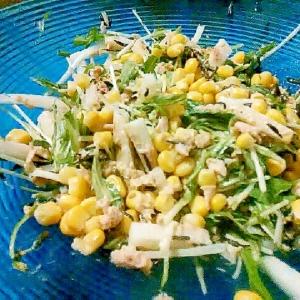 食物繊維たっぷり!ひじき入り大根と水菜のサラダ