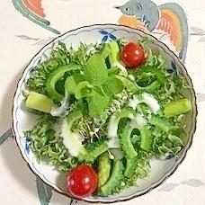 ゴーヤ、アスパラ、フリルレタス のサラダ