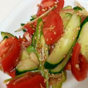 薬味だけじゃもったいない!夏野菜のナムル風サラダ
