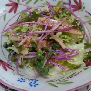 ハムと白菜とラディッシュの新芽のドレッシング和え