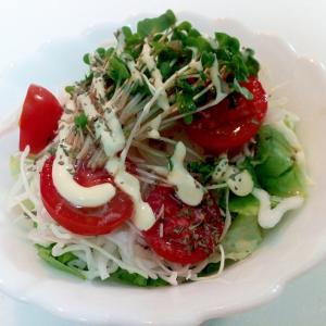 レタス・キャベツ・トマト・スプラウトの洋風サラダ