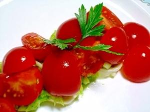 プチトマトとモッツァレラチーズ~イタリアンパセリ~