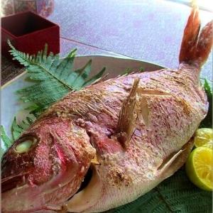 お祝いに 鯛の塩焼き・にらみ鯛
