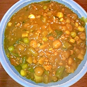 ゴーヤ、インゲン、豆の野菜たっぷりキーマカレー