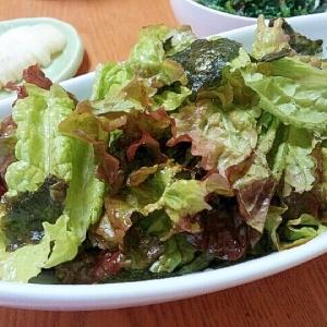 焼肉に合う!サニーレタスのサラダ