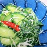朝の100レシピ 87)「水菜ときゅうりの新漬け」