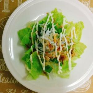 簡単☆釜揚げしらすとレタスの和風サラダ