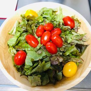 グリーンリーフのトマトサラダ