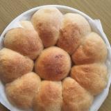 天然酵母で作る♥手捏ねちぎり全粒粉パン