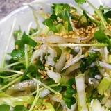 生白菜のしらすサラダ