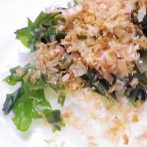 新玉とわかめの和風サラダ