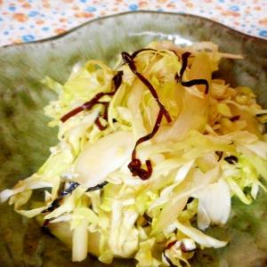 キャベツとセロリの塩昆布サラダ