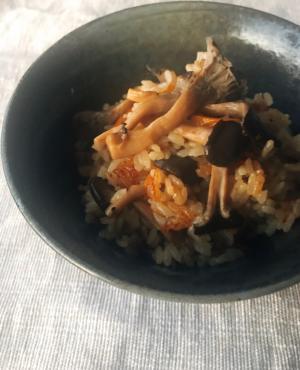 肉厚!味染みヒラタケの炊き込みご飯