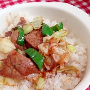 簡単!野菜と豚肉の丼★