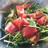 豆苗とツナトマトのサラダ