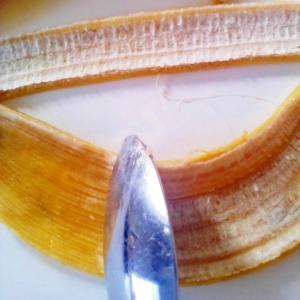 スムージーには、バナナの白いすじも♪