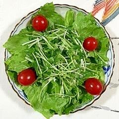 レタス と水菜のサラダ