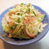 白菜とシーサラダと胡瓜の和風サラダ