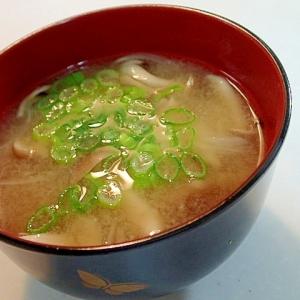 玉葱としめじと葱の美的お味噌汁