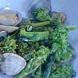 菜の花とアサリのニンニク蒸し