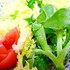 ソルトリーフのシャキシャキ彩りサラダ