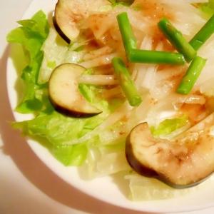玉ねぎドレで☆蒸し野菜&大根サラダ