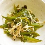 茎わかめ・えのき・生姜の麺つゆ炒めです♪