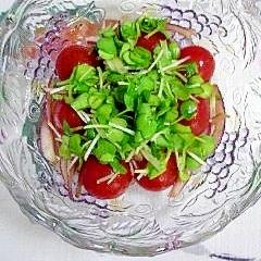 ミニトマトと赤玉葱にバルサミコ♪
