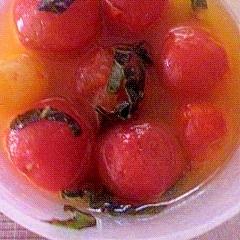 ミニトマトのオリーブオイル漬け