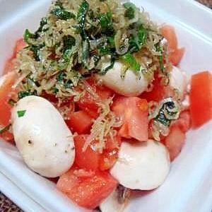生マッシュルームとトマトのじゃこサラダ