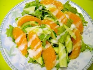 オレンジとグリーンリーフのサラダ