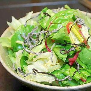 スイスチャードとレタスの塩昆布サラダ
