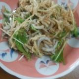 切り干し大根と水菜としらすのサラダ