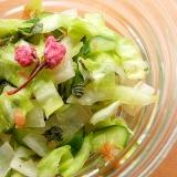 塩なし❤梅干し&大葉で野菜3種の一夜漬け♪