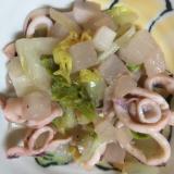 ヤリイカ・白菜・大根・玉ねぎの白ワイン煮込み
