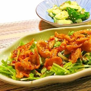 カリカリ鶏皮と水菜のピリ辛ソースがけ