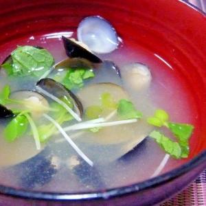 ❤ 大根葉&カイワレ入りシジミの御味噌汁 ❤