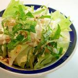 レタスと大根と大葉の和風サラダ