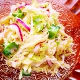 四角豆と紫玉ねぎのコールスロー風ヨーグルトサラダ