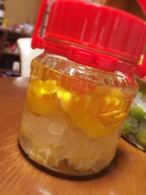 果実酒〜レモン酒〜