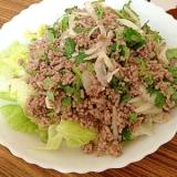 タイ風!豚ひき肉の幸せサラダ
